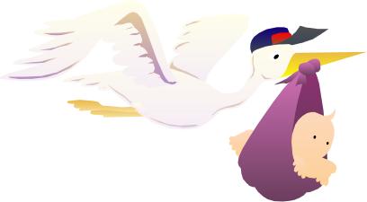 stork_delivery